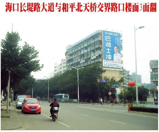 三亚凤凰国际机场户外广告牌